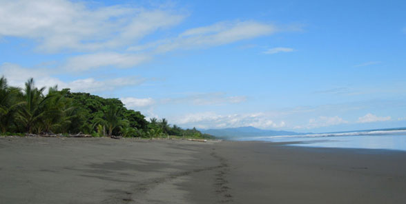 Secluded Beach of Playa Matapalo