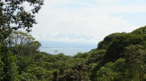 3 Acres of Paradise to Develop in Cinco Ventanas