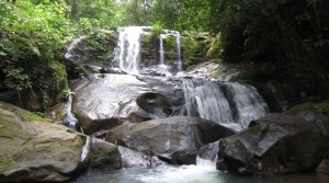 Over 7 Acres in the Platanillo Mountains with Private Waterfall