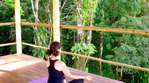 Nature Yoga Retreat And Wellness Center With Ocean View