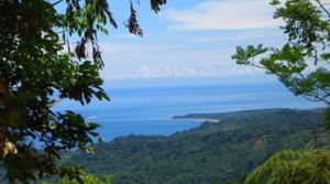 312 Acres of Spectacular Ocean View Land in Ojochal