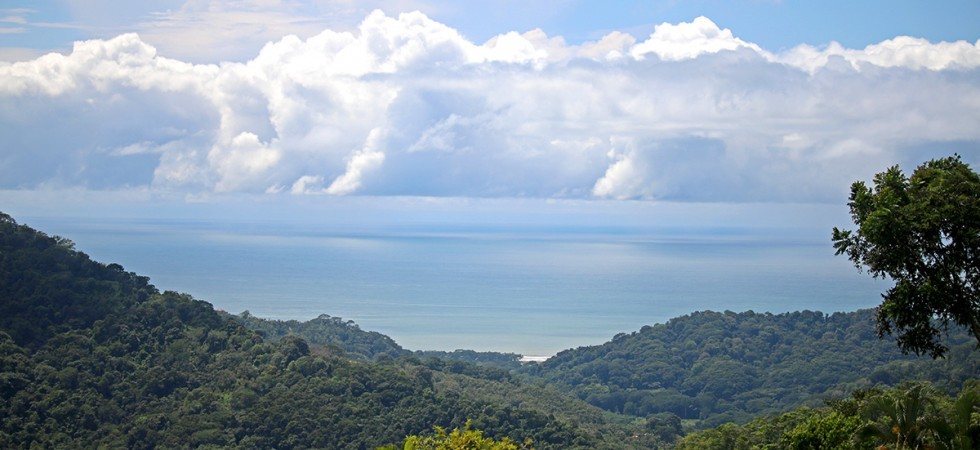 Large 3 To 5 Acre Ocean View Building Lots At Cacao Ridge In Platanillo