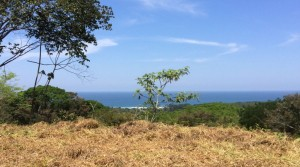 2 Acre Ocean View Lot In Hatillo Without Building Restrictions