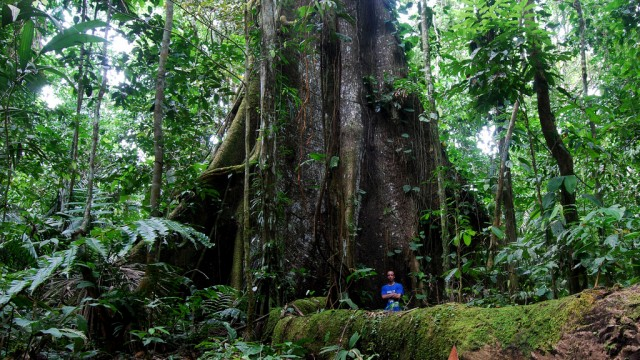 Land Purchasing: Another Reminder Of Why Buying Land In Costa Rica Is So Rewarding