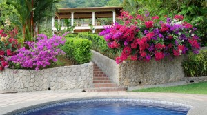 The Garden Of Eden Nature Estate On Eight Acres In Playa Uvita