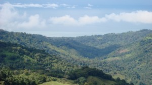 Foreclosure Ranch Near Uvita With Ocean Views and Private Waterfalls