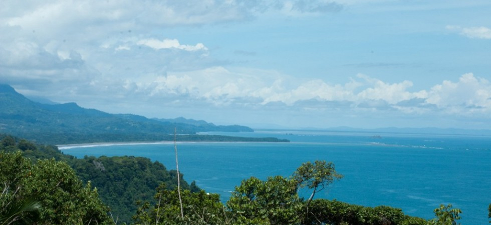 14 Acre Land Parcel With Incredible Ocean Views In Playa Dominical