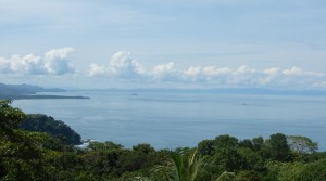 7 Acre Ocean View Land In San Martin Community Above Dominical