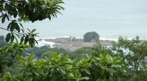 Over 8 Prime Acres With Ocean View In The Hills Above Dominical