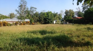 Affordable Home Building Site Located Near San Isidro Del General
