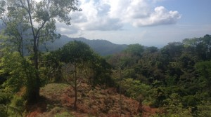 Large Ocean View Land Parcel In Uvita With Multiple Building Locations