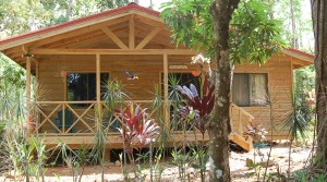 Tropical Rainforest Cabina Hospitality Business In Playa Uvita