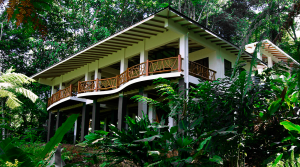 Tropical Rainforest Home In A Private Eco Community Close To The Beach