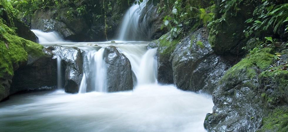 Eco Adventure Resort Property With Private Wildlife Sanctuary