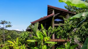 Rainforest Sanctuary With Two Ocean View Homes Near The Morete River