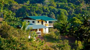 Rainforest Hideaway In A Nature Reserve Close To Dominical Beach