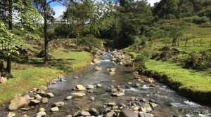 533 Acre Cattle Ranch With Rivers And Streams Above San Isidro