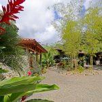 Riverfront Property In Uvita