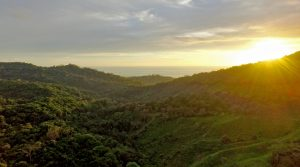 33 Acre Development Property With Ocean Views Located In Lagunas
