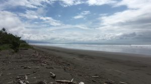 Playa Matapalo Beachfront Property For Commercial Or Residential Use