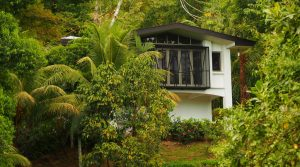 Private Rainforest Studio With Ocean View And Extra Building Site